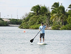 Affordable SUP paddles. Click on picture to zoom in.